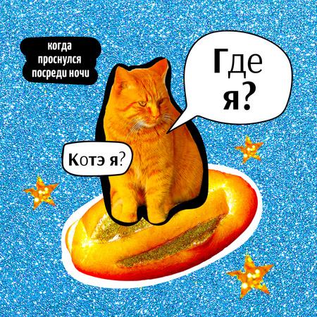 Funny Cat flying on Bread Instagram – шаблон для дизайна