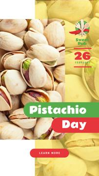 Pistachio Day Offer Salted Nuts