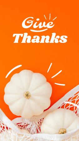 Thanksgiving Holiday Greeting with White Pumpkins Instagram Story – шаблон для дизайна