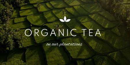Plantilla de diseño de Beautiful Landscape of Tea Plantations Twitter
