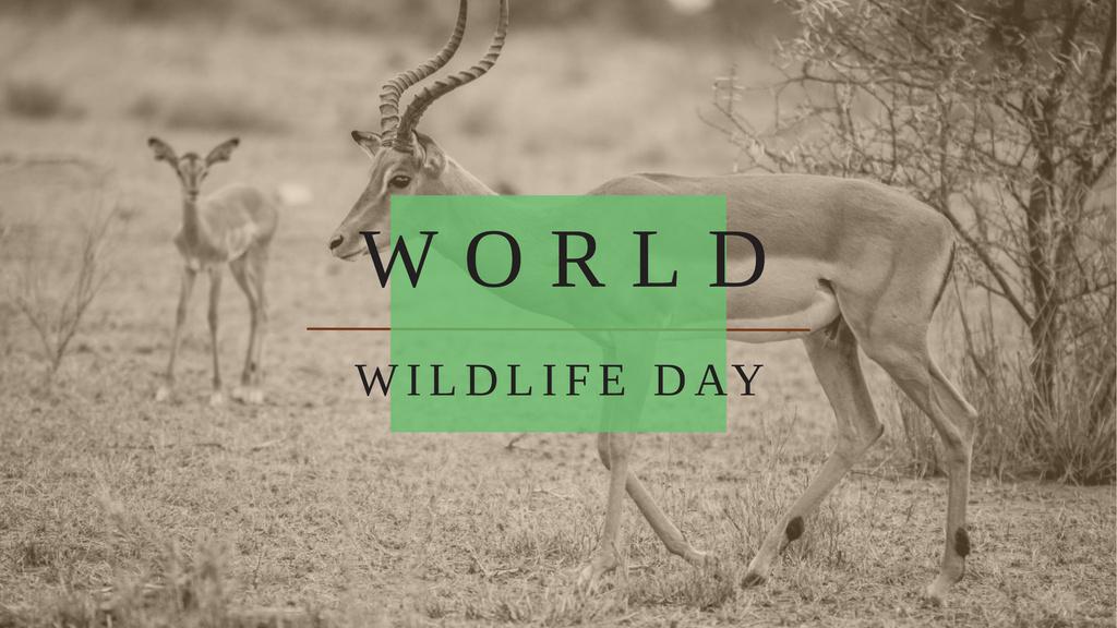 World Wildlife Day with Antelope in Natural Habitat — Створити дизайн