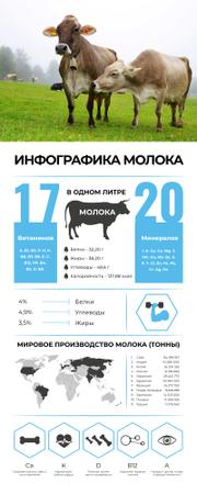 Statistical and Map infographics about Milk Infographic – шаблон для дизайна