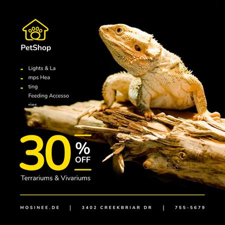 Pet Shop Offer Lizard on a Log Instagram – шаблон для дизайну