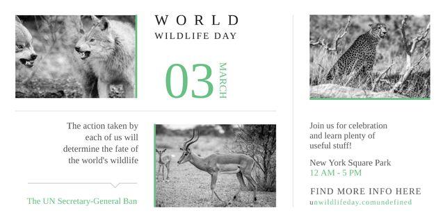 World Wildlife Day Animals in Natural Habitat Image – шаблон для дизайна