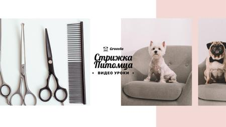 Pets Grooming Guide with Cute Dogs Youtube – шаблон для дизайна