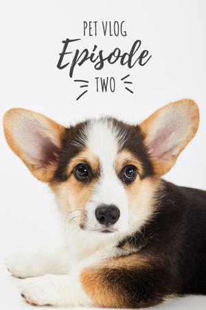 Designvorlage Pet Vlog Ad with Cute Dog für Pinterest