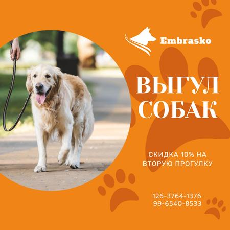 Dog Walking Services Man with Golden Retriever Instagram AD – шаблон для дизайна