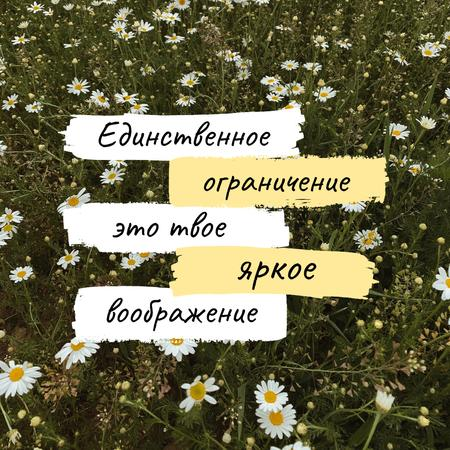 Imagination Quote on blooming Meadow Instagram – шаблон для дизайна