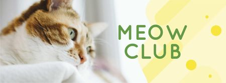 Adorable Cat by window Facebook cover Design Template