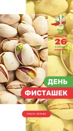 Pistachio Day Offer Salted Nuts Instagram Story – шаблон для дизайна