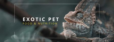 Chameleon reptile care tips Facebook coverデザインテンプレート