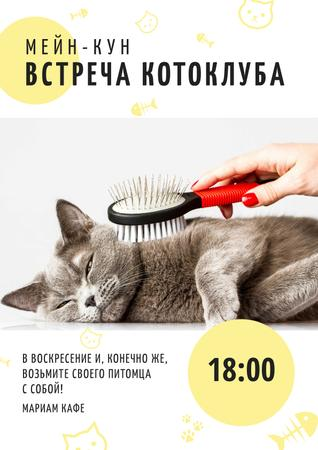 Cat club meeting Poster – шаблон для дизайна