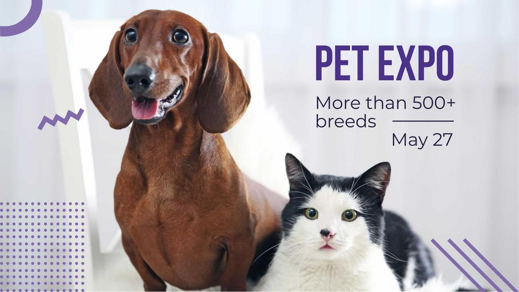 Pet Expo with Dachshund and Cat — Créer un visuel