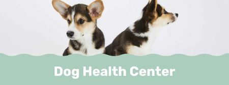 Dog health center with cute Corgi Puppies Facebook cover – шаблон для дизайна