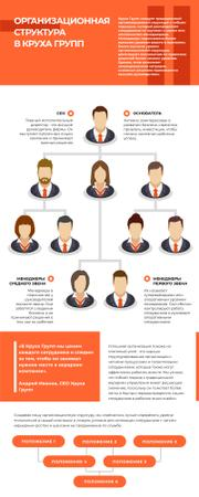 Business Infographics about Organizational Structure Infographicデザインテンプレート