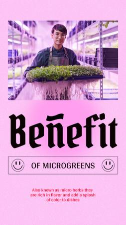 Farmer holding Micro Greens Instagram Story Modelo de Design
