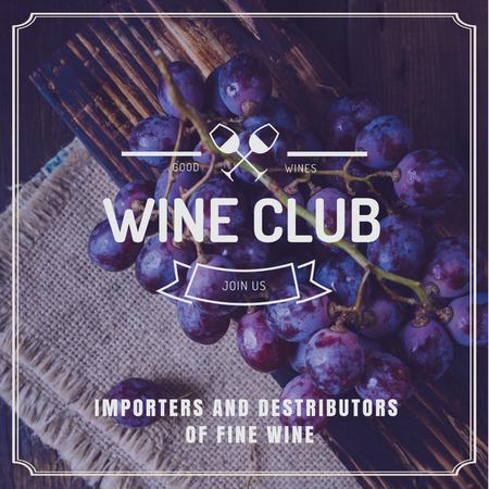Wine club Invitation with fresh grapes Instagram Design Template