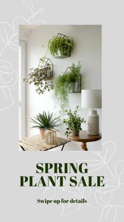 Ontwerpsjabloon van Instagram Story van Spring Plant Sale Announcement