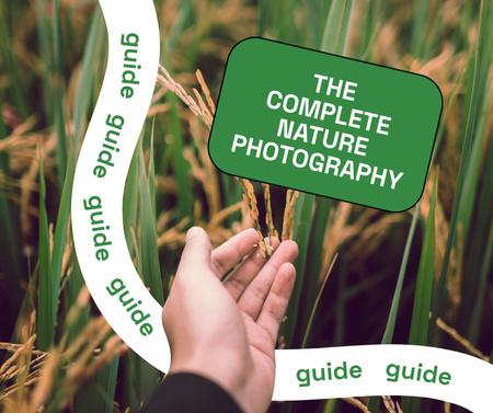 Plantilla de diseño de Photography Guide with Hand in Wheat Field Facebook