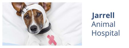 Modèle de visuel Dog in Animal Hospital - Facebook cover