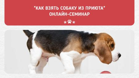 Puppy socialization class with Dog FB event cover – шаблон для дизайна