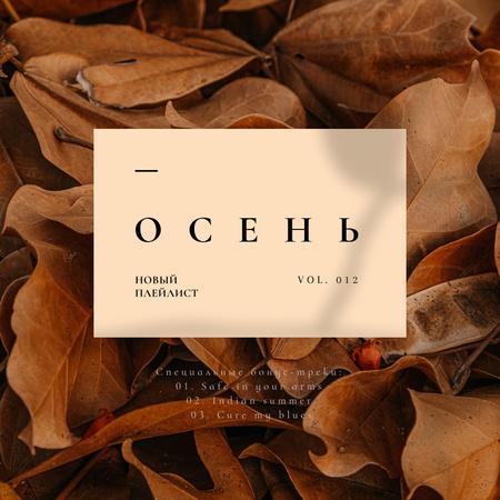 Autumn Mood with dry Leaves Album Cover – шаблон для дизайна