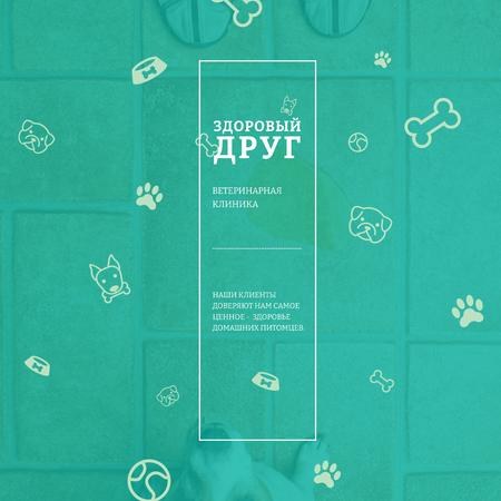 Healthy pet Veterinary Clinic ad Instagram AD – шаблон для дизайна