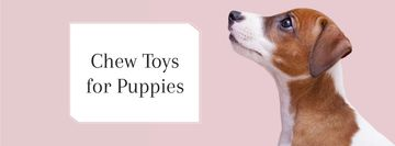 Pet Toys ad with Dog