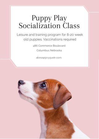 Plantilla de diseño de Puppy socialization class with Dog in pink Invitation