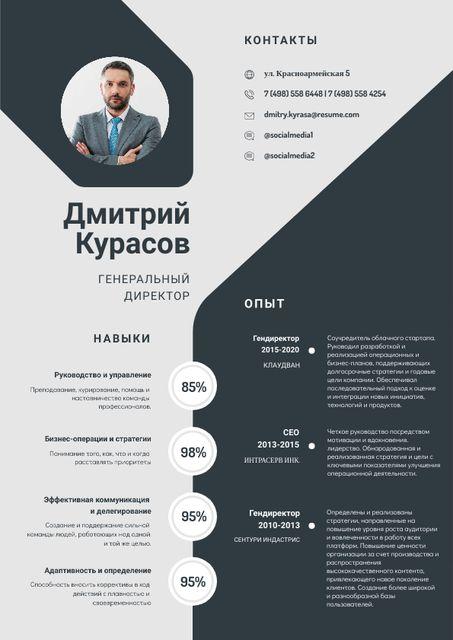 Chief Executive Officer Professional profile Resume – шаблон для дизайна