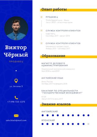 Sale Executive skills and experience Resume – шаблон для дизайна