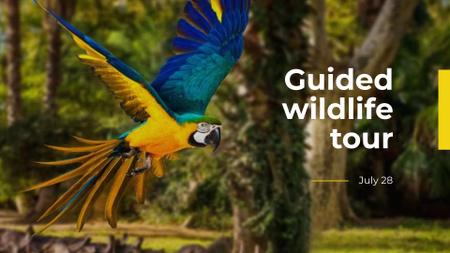 Modèle de visuel Exotic Tours Offer Parrot Flying in Forest - FB event cover