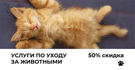 Pets Pampering Services Offer with Sleeping Kitty Facebook AD – шаблон для дизайна