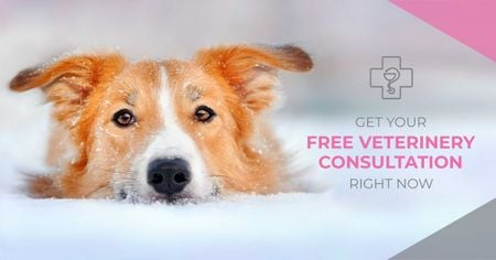 Free veterinary consultation Ad with Cute Dog Facebook ADデザインテンプレート