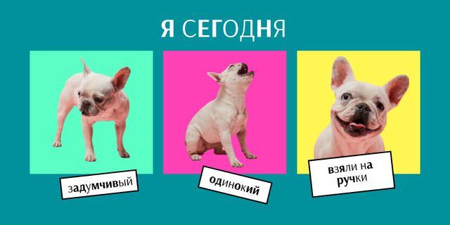 Funny Cute Smiling Puppy Twitter – шаблон для дизайна