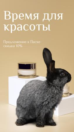 Cosmetics Easter Offer with cute Bunny Instagram Video Story – шаблон для дизайна