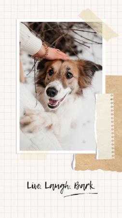 Modèle de visuel Funny Dog with owner - Instagram Story