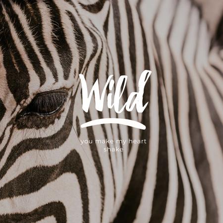 Template di design Phrase with Eye of Wild Zebra Instagram