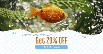 Golden Fish swimming Underwater