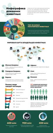 Map Infographics about World Pets Owners Infographic – шаблон для дизайна