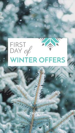 Modèle de visuel First Day of Winter Offers Announcement - Instagram Story