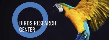 South American exotic birds center