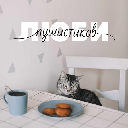Cute Cat at Kitchen with Coffee Instagram – шаблон для дизайна