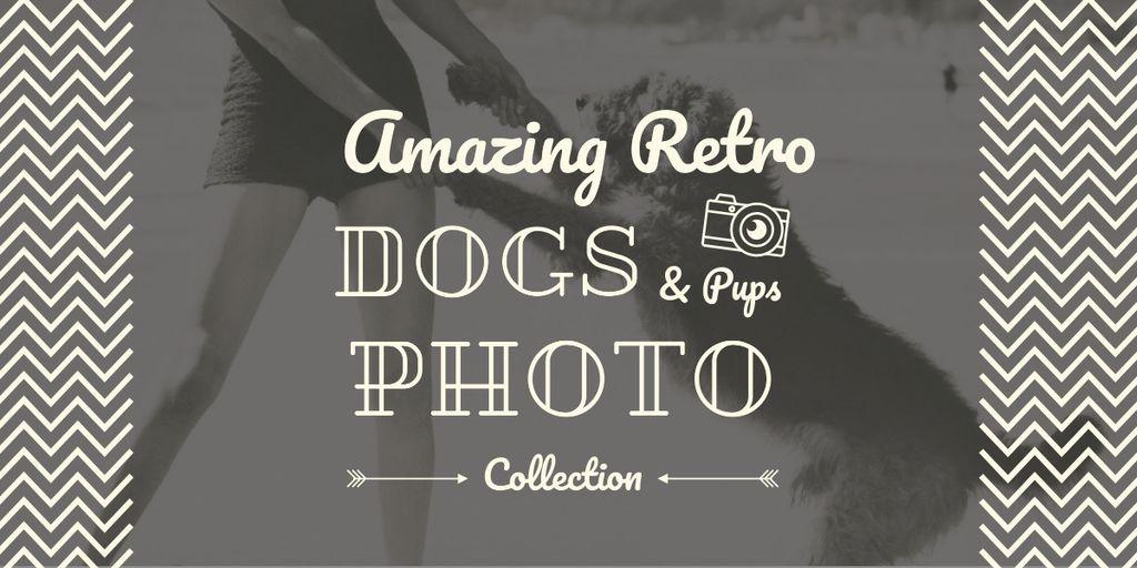 amazing retro dogs photo collection poster — Crea un design