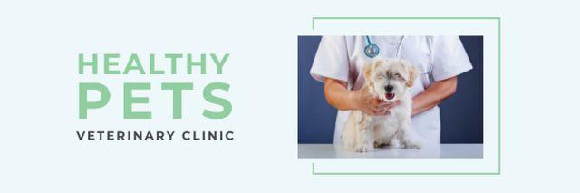 Pet in veterinary clinic Email header – шаблон для дизайну