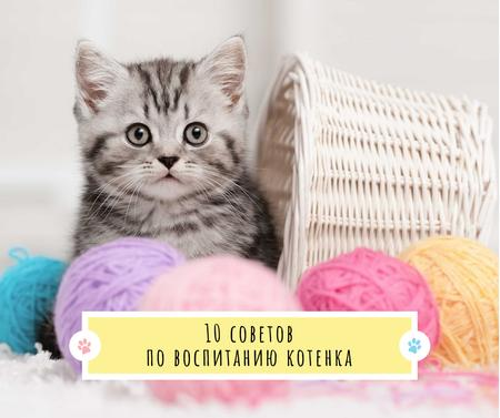 Cute Kitten in yarn balls Facebook – шаблон для дизайна