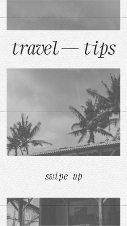 Modèle de visuel Travel Tips Ad with Palm Trees - Instagram Story