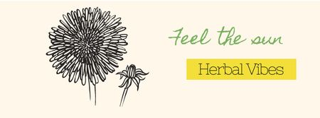 Herbal vibes Offer Facebook cover Modelo de Design