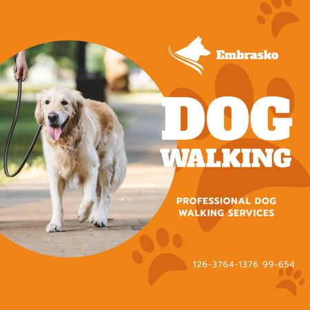 Designvorlage Dog Walking Services Man with Golden Retriever für Instagram AD