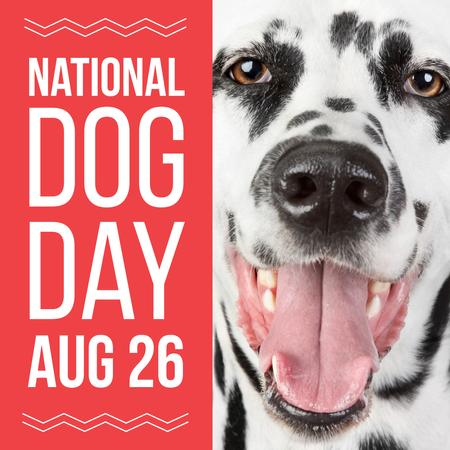 National dog day with Funny Dalmatian Instagram – шаблон для дизайну